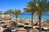 Scopri SHARM EL SHEIKH - SUNRISE GRAND SELECT MONTEMARE RESORT